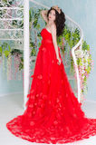 Woman In Red Long Dress Stock Images