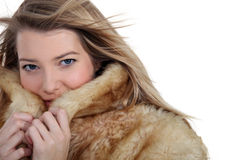 Woman ina a warm coat Stock Photography
