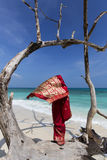 Woman in an Indian Sari Royalty Free Stock Photos