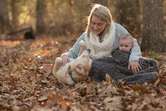 Woman and infant play with a dog in a fall setting Royalty Free Stock Images