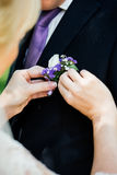 Woman inserting the boutonniere in buttonhole man in suit. Woman inserting the boutonniere in buttonhole of man in suit Stock Photo