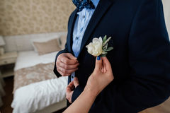 Woman inserting the boutonniere in buttonhole of man in suit. Bride inserting the boutonniere in buttonhole of man in suit Royalty Free Stock Image