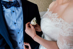 Woman inserting the boutonniere in buttonhole of man in suit. Bride fastens groom boutonniere to buttonhole Royalty Free Stock Images