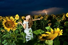 Woman inside sunflowers field Royalty Free Stock Photos