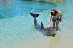 Woman interact with Dolphin Royalty Free Stock Photography