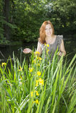 Woman among the irises in the water. The red-haired woman of average years stands among the irises in vodema and she smiles royalty free stock images