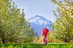 Woman in Japan costume at cherry blossom Royalty Free Stock Photography