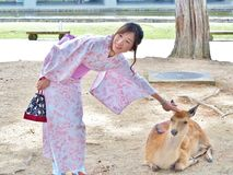 Woman in Japanese traditional dress called Yukata play with deer Royalty Free Stock Photos