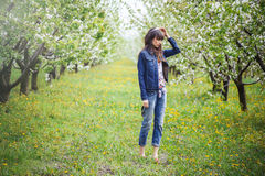 Woman in jeans in cherry orchard Stock Images