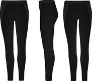 Woman jeggings Royalty Free Stock Images