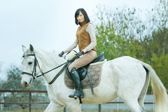 Woman jockey. Is riding the horse outdoor royalty free stock images
