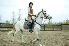 Woman jockey Stock Photography