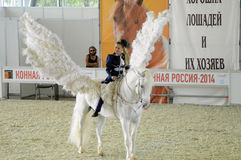 Woman jockey in blue dress International Horse Show. Female rider on a white horse. Pegasus. White Wings Stock Images