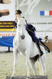 Woman jockey in blue suit gets off the white horse. International Horse Exhibition Royalty Free Stock Image