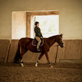 Woman jockey doing training at indoor arena Royalty Free Stock Image