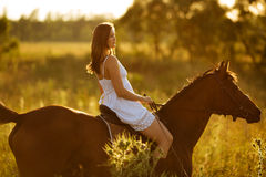 Woman - jockey riding on a horse Royalty Free Stock Photography