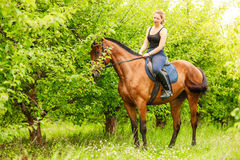 Woman jockey training riding horse. Sport activity Stock Photos
