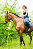 Woman jockey training riding horse. Sport activity Stock Photography