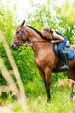 Woman jockey training riding horse. Sport activity Royalty Free Stock Image
