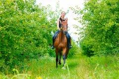 Woman jockey training riding horse. Sport activity Stock Photos