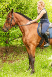 Woman jockey training riding horse. Sport activity Royalty Free Stock Image