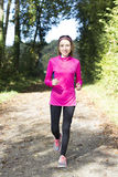 Woman jogging in forest in autumn Royalty Free Stock Image