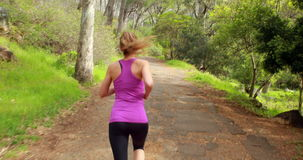 Woman jogging in the forest stock video footage