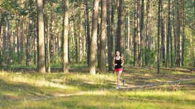 Woman jogging in forest Stock Images
