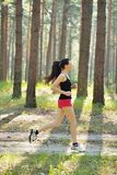 Woman jogging in forest Royalty Free Stock Photo