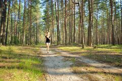 Woman jogging in forest Royalty Free Stock Image