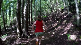 Woman jogging in the forest on a sunny day 4k. Rear view of woman jogging in the forest on a sunny day 4k stock video