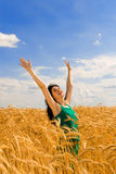 Woman jumping in golden wheat Stock Image