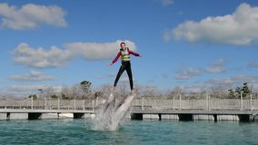 Woman jumping out of the water with dolphins, swimming with dolphins stock video footage