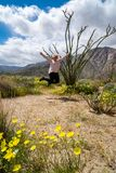 Woman jumps for joy next to an Ocotillo plant cactus. Wildflowers in photo.  royalty free stock photography