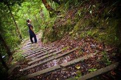 Woman Jungle Hiker Royalty Free Stock Image