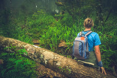 Woman on the jungle path. Girl resting on a fallen tree log the jungle path to the summit of Gunung Rinjani volcano in Lombok, Indonesia Stock Image