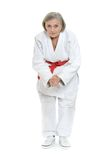 Woman in karate pose Stock Photos