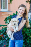 Woman keeping white labrador puppy Stock Images