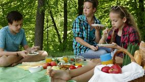 Woman and kids on a picnic at the forest edge - eating stock footage