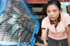 Woman kills flying mosquito Stock Images
