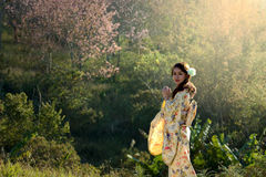 Woman in kimono traditional japanese dress Royalty Free Stock Photography