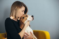 Woman kiss puppy of beagle. Young woman in black dress hug and kiss beagle puppy on yellow chair with grey wall on background royalty free stock photos
