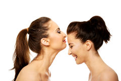 Woman kissing friend in forehead. Stock Photography