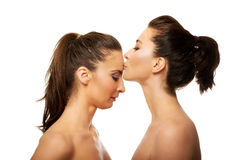Woman kissing friend in forehead. Stock Images