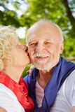 Woman kissing man on cheek in garden Royalty Free Stock Images
