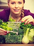 Woman in kitchen having vegetables holding shopping trolley Royalty Free Stock Photography