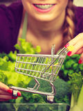 Woman in kitchen having vegetables holding shopping trolley. Buying healthy dieting food concept. Woman in kitchen having many green vegetables holding small Stock Photography