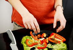 Woman in the kitchen preparing some food. Royalty Free Stock Photography