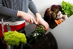 Woman in the kitchen preparing some food. Woman in the kitchen preparing some healthy food royalty free stock images