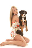 Woman kneel dog and pig Stock Image